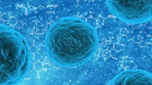 Positive and negative Impacts of Stem Cells