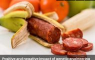 Positive and negative impact of genetic engineering