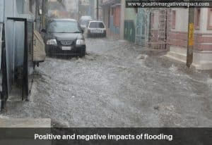 Positive and negative impacts of flooding