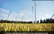 Positive and negative effects of the green revolution
