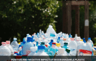 Positive And Negative Impact Of Biodegradable Plastic